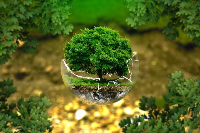Sicurezza ambientale eHACCP